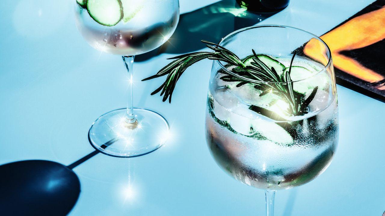 Wieso Tanqueray der bessere Gin ist