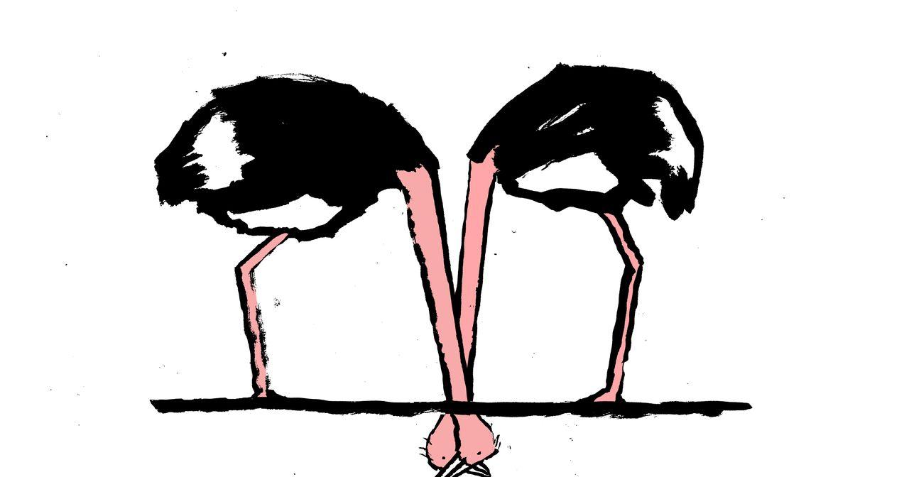 Das Schnäuzelchen-Dilemma